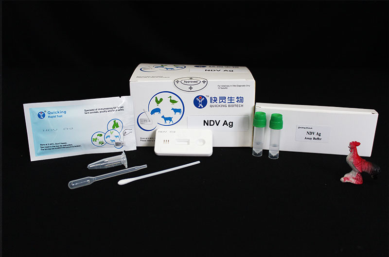 NDV Ag Rapid Test ( W81043 )
