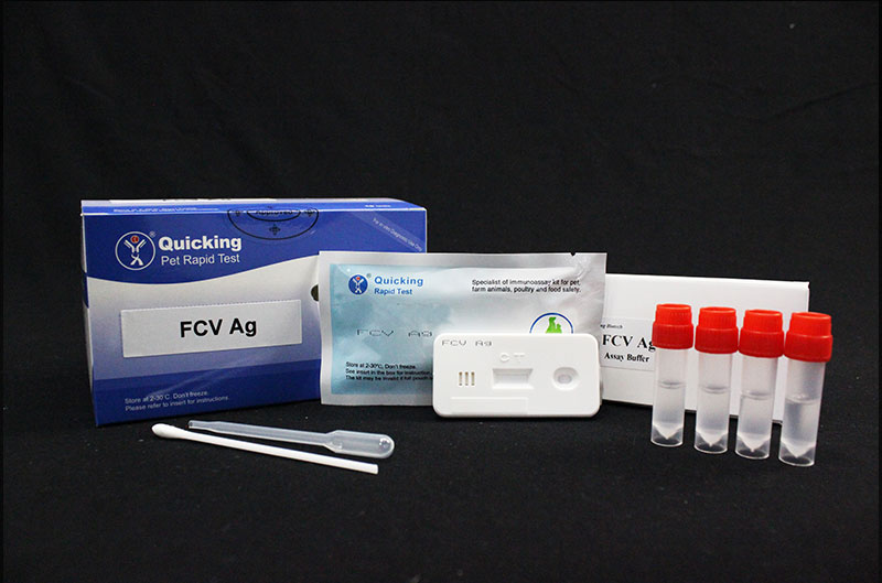 FCV Ag Rapid Test ( W81201 )