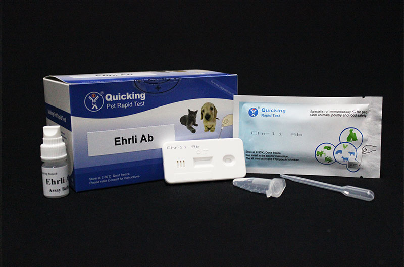 E.canis Ab Rapid Test(W81132)