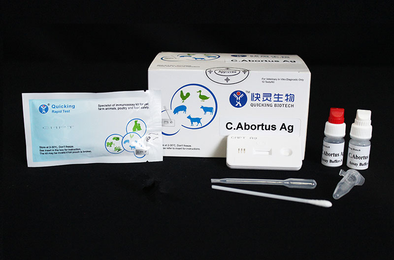 C.Abortus Ag Rapid Test (W81072 )