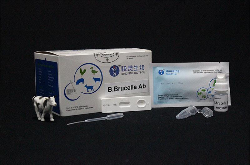 B.Brucella Ab Rapid Test (W81085)