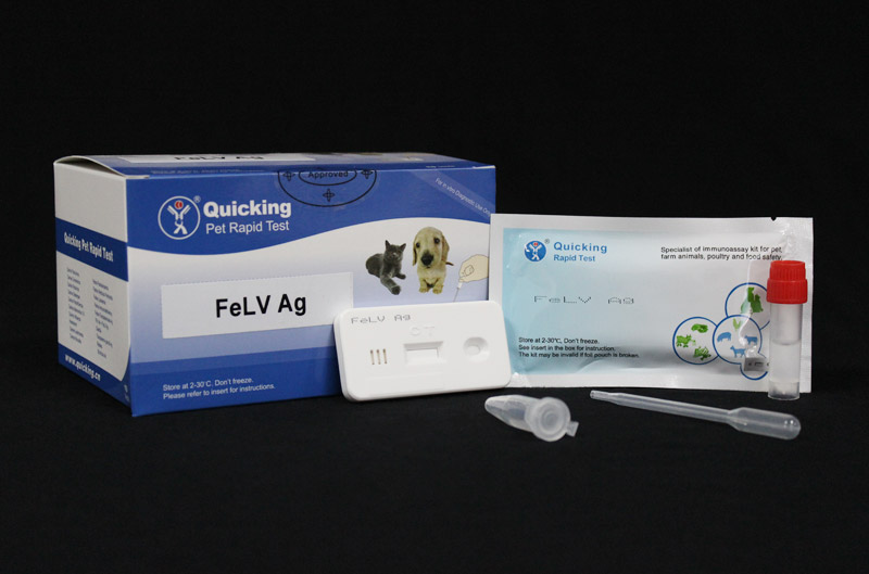 FeLV Ag Rapid Test ( W81017 )